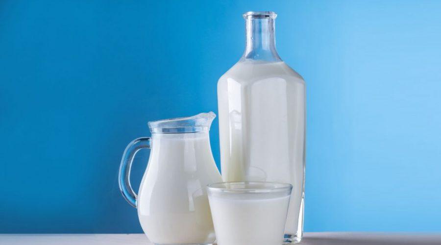 Digital Readiness AUDIT bei einem führenden, globalen Milchkonzern
